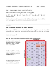 TranscriptionTranslationWorksheet