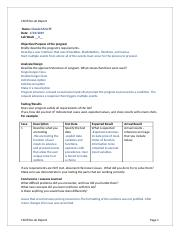 CIS355A_Lab_Report_Template (3).docx