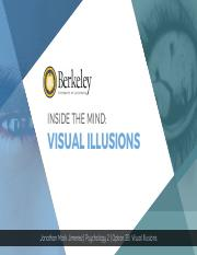 Option 2B- Visual Illusions.pdf