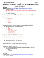 Virus Webquest Answer Key - Walldecorhouz.me