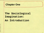 Sociology 101 Chapter 1 Lecture Slides