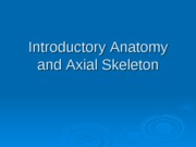 Axial Skeleton and Skull lab 4