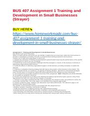 BUS 407 Assignment 1 Training and Development in Small Businesses (Strayer).docx