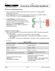 SBI4U+--+Unit+D+--+overview+of+protein+synthesis