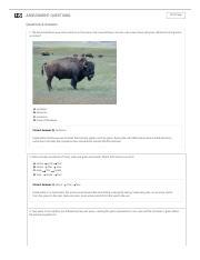 Mineral Identification Gizmo - ExploreLearning.pdf ...