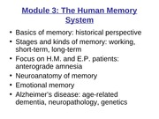 Human memory lecture  PPT slides