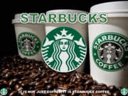 Starbucks Operations (Presentation)