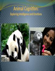 3Animal Cognition