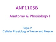 ANP1105Topic 2 - Part 1 Fall 2015
