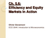 "Ch 5-6 â€"" Efficiency and equity & Markets in Action"