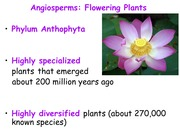 Notes on Angiosperms