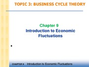 Topic 5 - Introduction to Economic Fluctuations