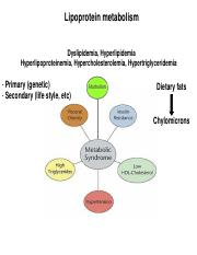 Lecture Lipoproteins post(1).pdf