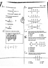 Orgo Review 2