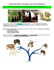 Cladogram Gizmo - Name Date Student Exploration Cladograms ...