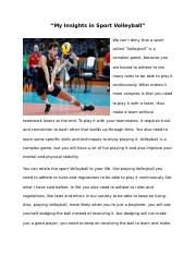 My Insights in Sport Volleyball