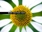 what-matters-now-1