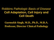 Cell Adaptation, Cell Injury, and Cell Death