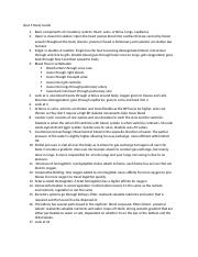 Quiz 5 Study Guide (1).docx