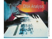 DNA-analysis