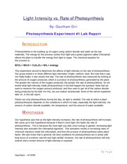 Photosynthesis exp lab report