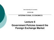 IEU - Lecture 6 - Government Policies