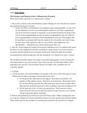 setting goals essay grader free