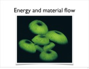 Energy and Material Flow