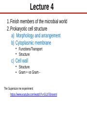 Lect 4 The prokaryotic cell