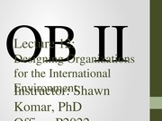 OB II S2014 - Lecture 12 - Designing Organizations for the International Environment