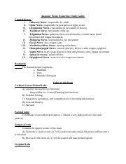 Anatomy Neurology Exam_ One Study Guide.docx