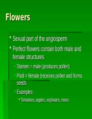 Flowers.ppt