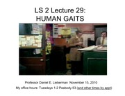 LS2.Lecture29.gaits
