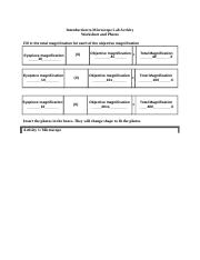 Backup of Microscope Lab Report Worksheet-3.docx