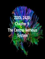 Zool 2420 Ch 9_ Central Nervous System.ppx.pptx