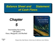 Chp5 Balance Sheet and Cash Flows