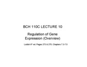 110C LEC 10 Regulation of eukaryotic gene expression (overview)