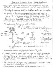 Exam 3 HAND-WRITTEN RYAN 5 PAGE SUMMARY PDF