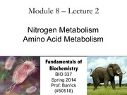 Module-8, Lecture-2 Nitrogen Metabolism, Review