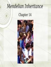 Chapter 14 Mendelian Inheritance for students
