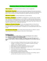 Chem Home Lab Report Guidelines (3).doc