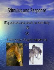 Stimulus and Response ppt.ppt