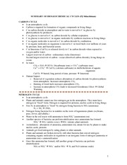 Worksheets Biogeochemical Cycles Worksheet summary of biogeochem cycles biogeochemical pj
