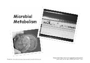 12_Microbial_Metabolism
