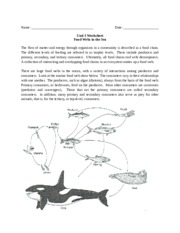 Griffin_Macie Food webs in the sea