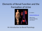 S1 The Formation of Urine