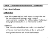 Lecture 2 International Business Cycle Models