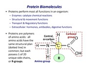 Lecture-5B-Proteins-_42855