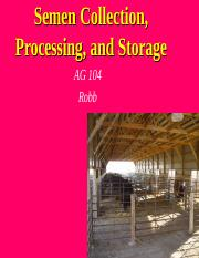 Semen_Processing__Collection__Storage.ppt