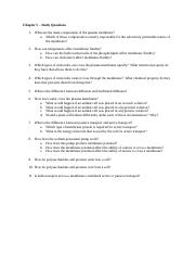 Chapter 5 Study Questions (1).docx